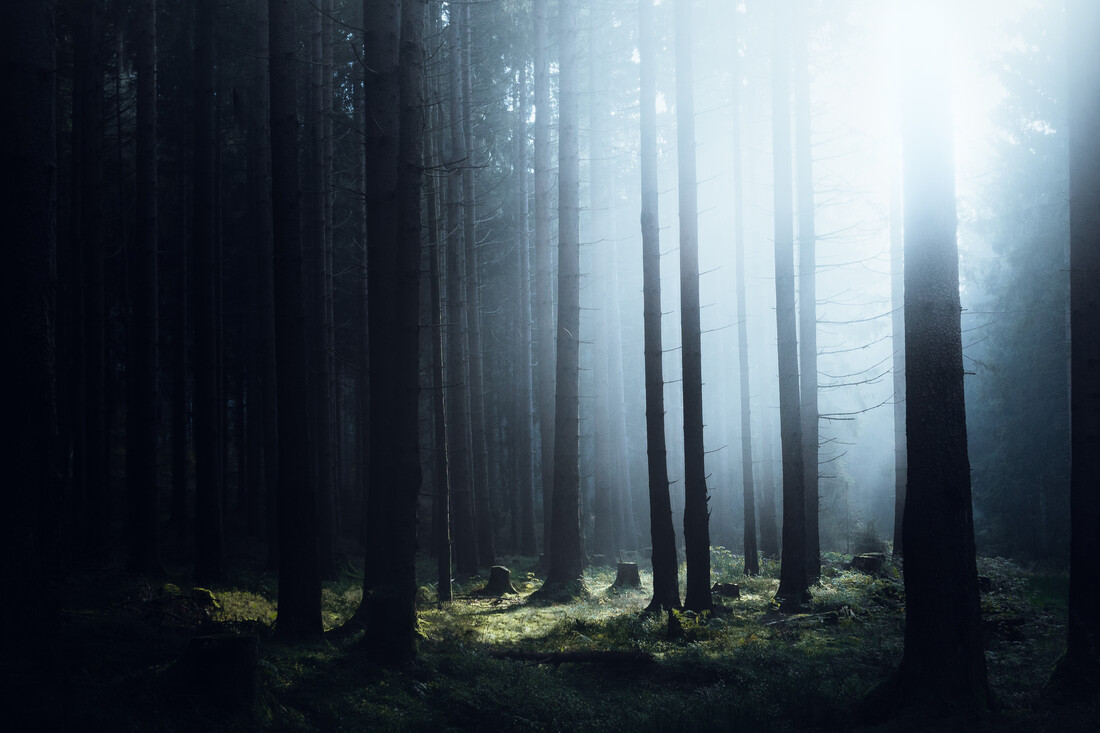 Verzaubert - fotokunst von Maximilian Fischer