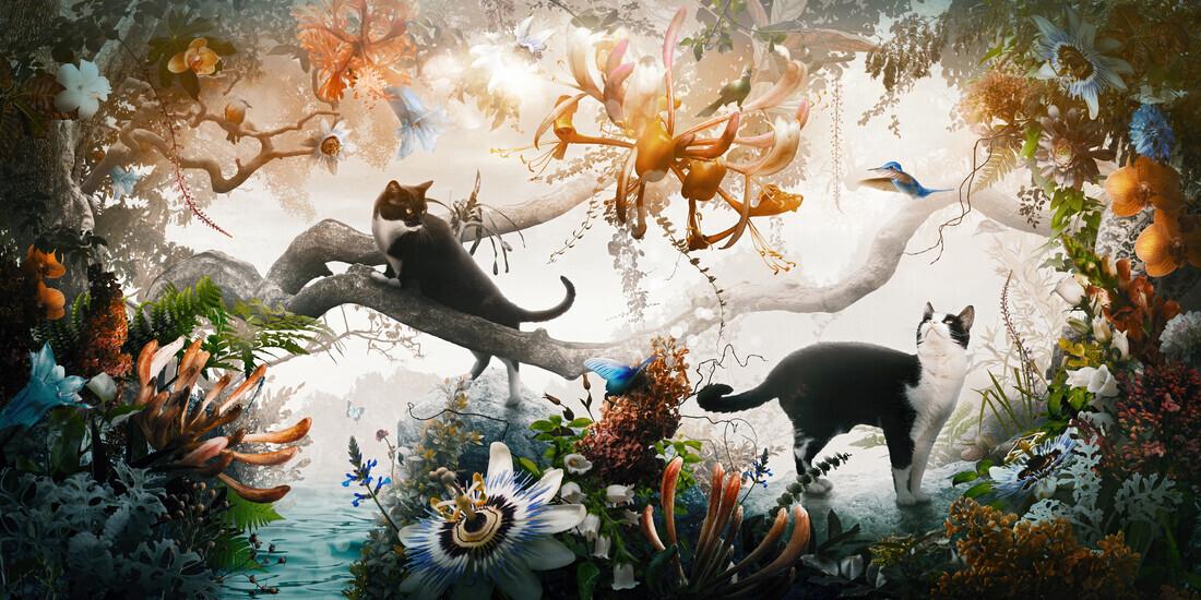 Electric Jungle - Fineart photography by Jesper Krijgsman