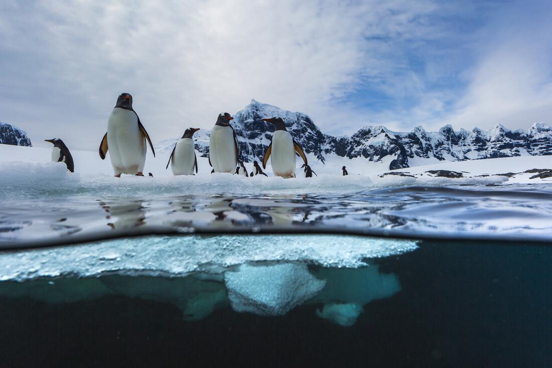 The edge - fotokunst von Jonas Beyer