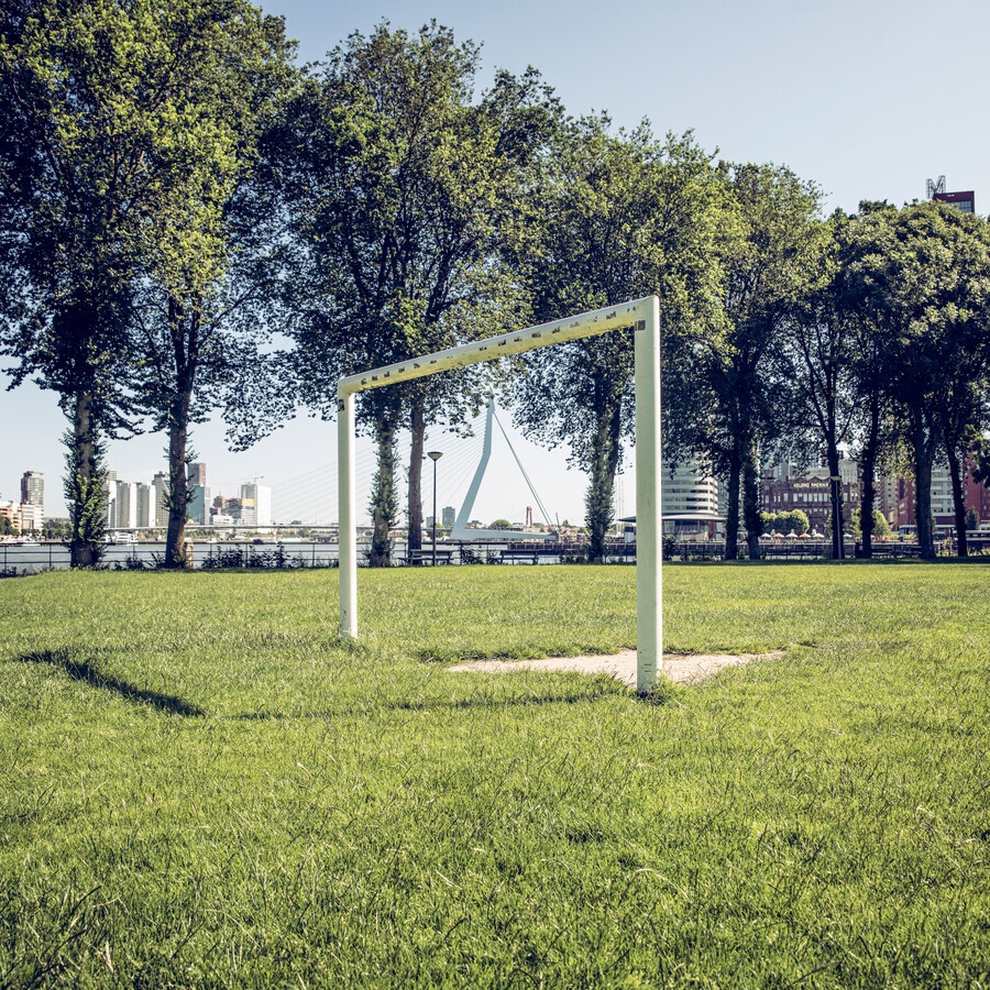 Grass, trees and Erasmusbridge - Fineart photography by Franz Sussbauer