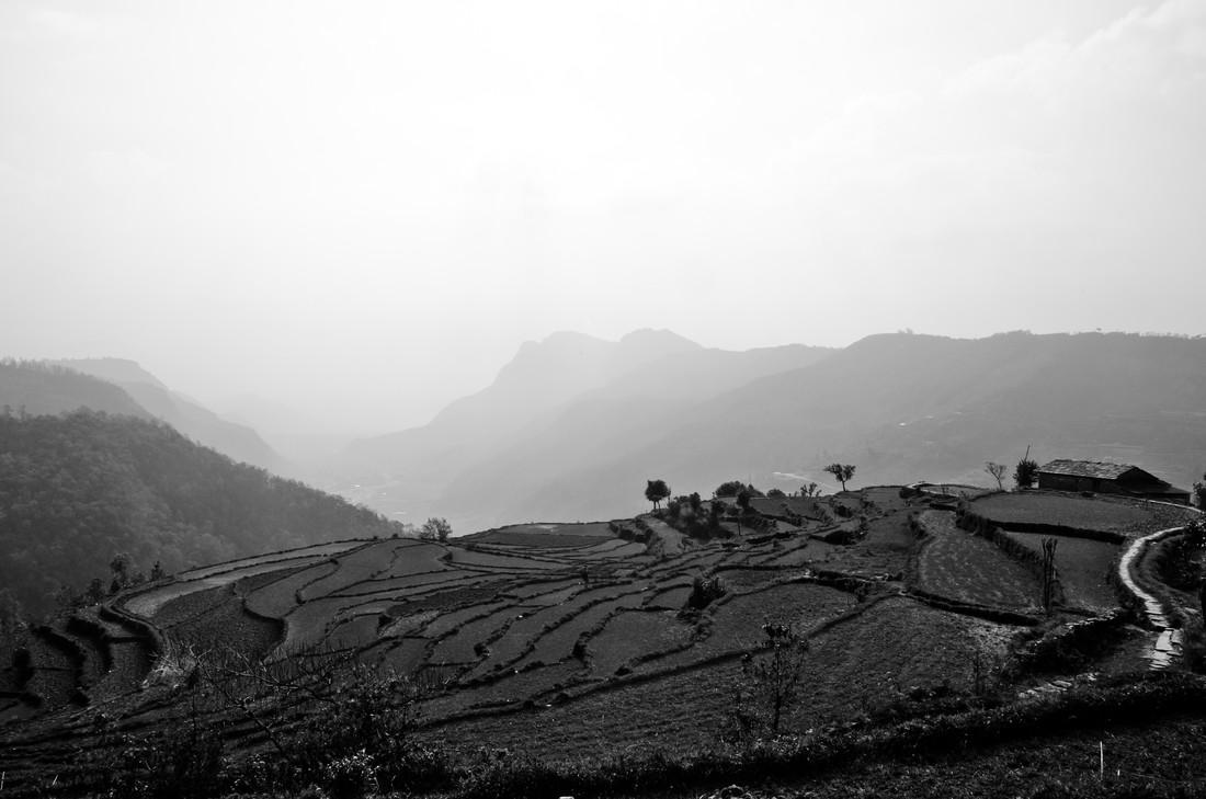 Rice Terrace - fotokunst von Marco Entchev