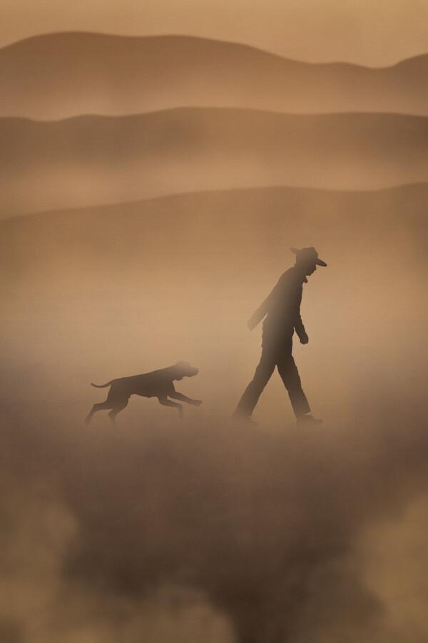dog, - Fineart photography by AJ Schokora