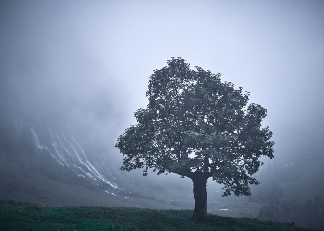 Solitude - Fineart photography by Alex Wesche