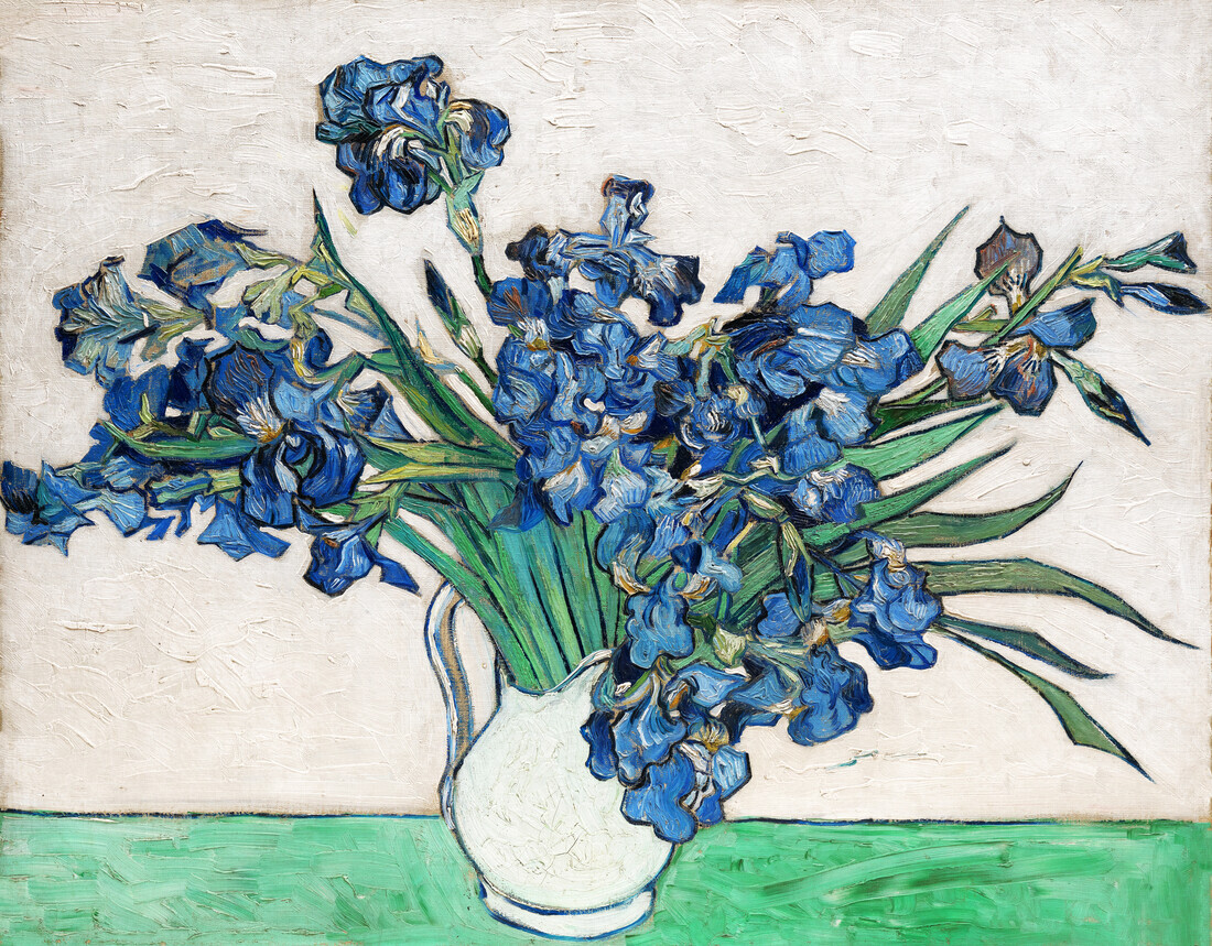 Irises by Vincent van Gogh - Fineart photography by Art Classics