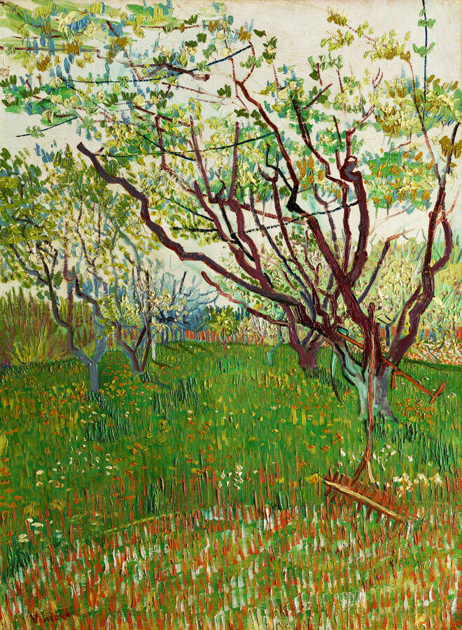 The Flowering Orchard by Vincent van Gogh - Fineart photography by Art Classics