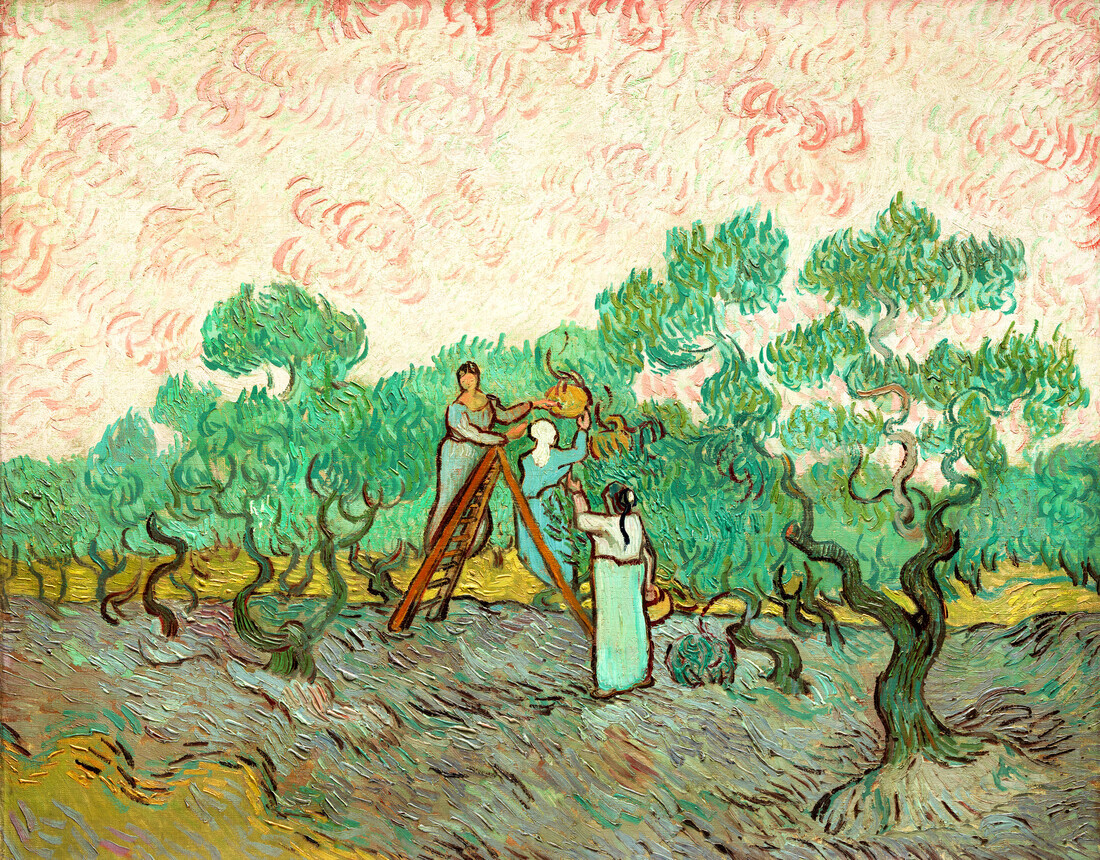 Women Picking Olives by Vincent van Gogh - Fineart photography by Art Classics