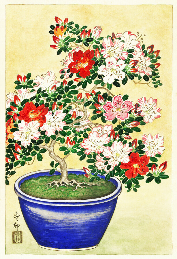 Blooming azalea by Ohara Koson - Fineart photography by Japanese Vintage Art