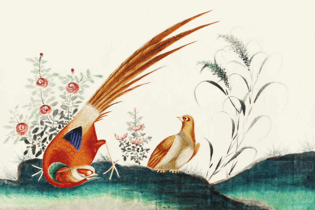 Chinese painting featuring two birds among flowers - Fineart photography by Vintage Nature Graphics