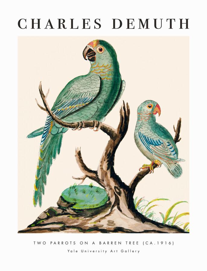 Charles Demuth: Two Parrots on a Barren Tree - fotokunst von Art Classics
