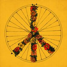 Florent Bodart, Peace and Bike (Deutschland, Europa)