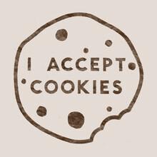 Florent Bodart, I accept cookies (Deutschland, Europa)