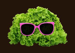 Florent Bodart, Mr. Salad (Deutschland, Europa)
