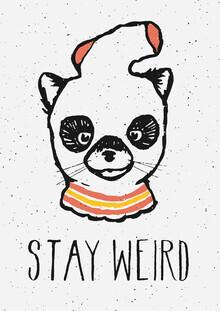 Florent Bodart, Stay Weird (Deutschland, Europa)