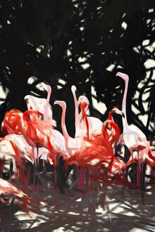 Uma Gokhale, Flamingoes Under The Banyan Tree (India, Asia)