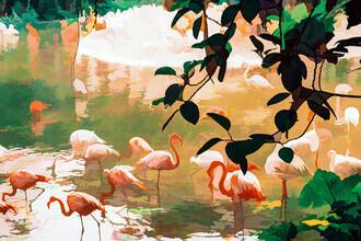 Uma Gokhale, Flamingo Sighting (India, Asia)