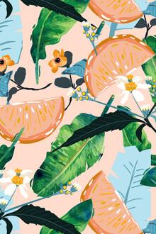 Uma Gokhale, Summer Botanicals (India, Asia)