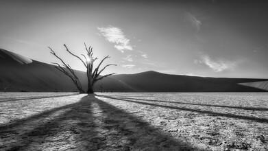 Dennis Wehrmann, Dead Vlei Sossusvlei Namibia (Namibia, Africa)