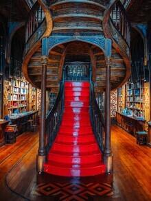 André Alexander, Livraria Lello Buchhandlung (Portugal, Europa)