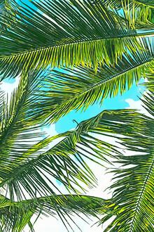 Uma Gokhale, Life Under Palm Trees, Colorful Bohemian Beachy (India, Asia)