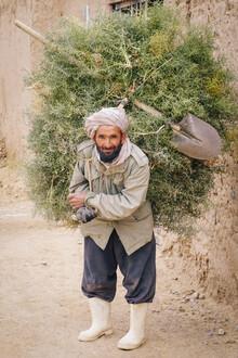 Gernot Würtenberger, Feuerholz Sammeln in Herat (Afghanistan, Asien)