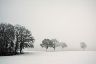 Lena Weisbek, Stiller Winter Tag (Deutschland, Europa)