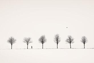 Lena Weisbek, Allee (Deutschland, Europa)