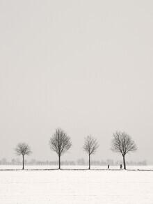 Lena Weisbek, Winter Spaziergang (Deutschland, Europa)