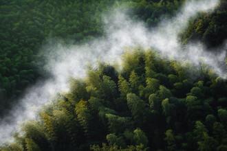 AJ Schokora, Misty Mountain Hop (pt. II) (China, Asien)