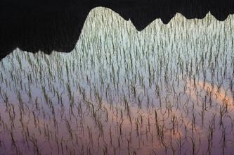 AJ Schokora, Rice Paddy Reflections (China, Asien)