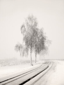 Lena Weisbek, Snowy Road (Deutschland, Europa)