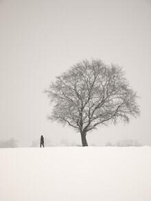 Lena Weisbek, Winter Walk (Deutschland, Europa)