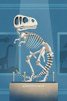 Dieter Braun, T-Rex Skeleton 2 (Germany, Europe)