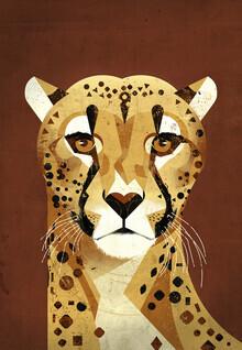 Dieter Braun, Cheetah (Germany, Europe)