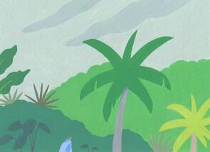 Loulou Elliott, Humidity and Trees (Saint Lucia, Latin America and Caribbean)