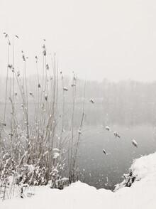 Lena Weisbek, Snowfall At Lake (Deutschland, Europa)