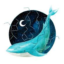 Marta Casals Juanola, Cosmic Whale 2 (Spain, Europe)