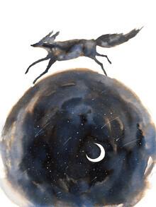 Marta Casals Juanola, Wolf and moon (Spain, Europe)