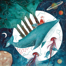 Marta Casals Juanola, Cosmic whale and red fox 3 (Spain, Europe)