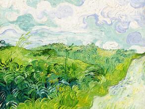 Art Classics, Vincent Van Gogh: Green Wheat Fields (Netherlands, Europe)