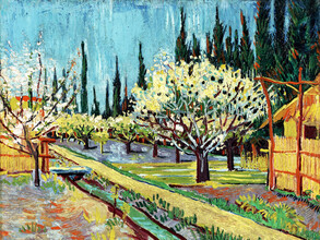 Art Classics, Vincent Van Gogh: Orchard Bordered by Cypresses (Netherlands, Europe)