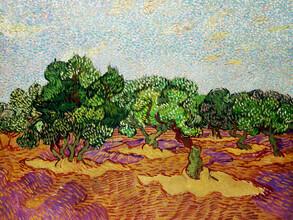Art Classics, Vincent Van Gogh: Olive Trees (Netherlands, Europe)