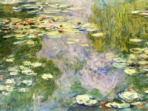 Art Classics, Claude Monet: Water Lilies (France, Europe)