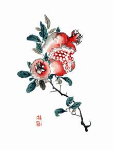 Vintage Nature Graphics, Kōno Bairei: Granatapfel (Japan, Asien)