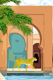 Uma Gokhale, Cheetah under the Moroccan arch (India, Asia)