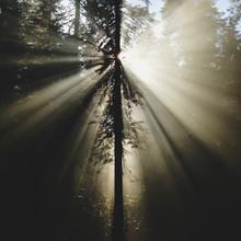 Kevin Russ, Umpqua Rays (United States, North America)