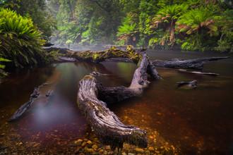 Boris Buschardt, Styx River (Australia, Oceania)