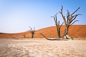 Dennis Wehrmann, Sonnenaufgang Dead Vlei Sossusvlei Namibia (Namibia, Afrika)