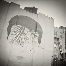 Alexander Voss, New York City - Street Art (United States, North America)