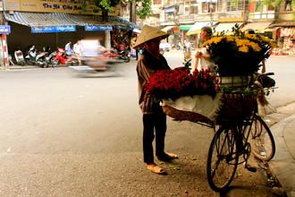 Marisa Pettit, Flower seller in Hanoi (Vietnam, Asien)