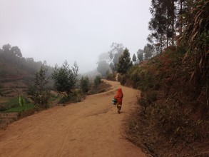 Delia Kämmerer, Morning Walk in the Usambara Mountains (Tansania, Afrika)